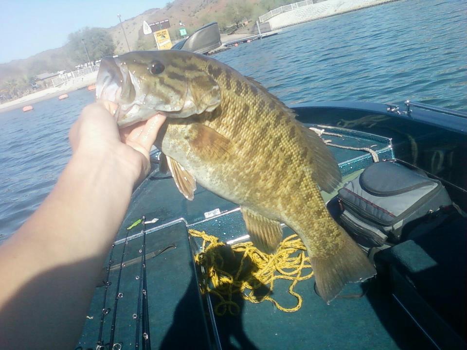 Spring Break Fishing Discussion Forum