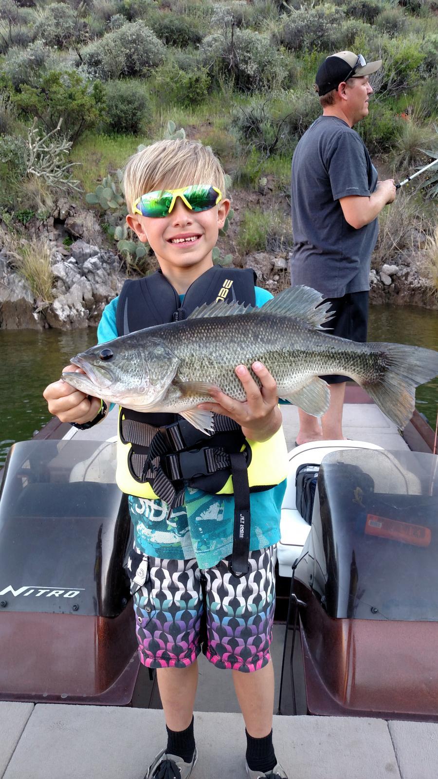 Apache lake fishing discussion forum for Apache lake fishing
