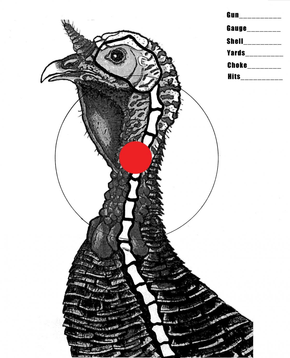 Punchy image within printable turkey head target