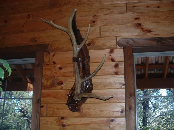How Do You Display Your Sheds Shed Hunting
