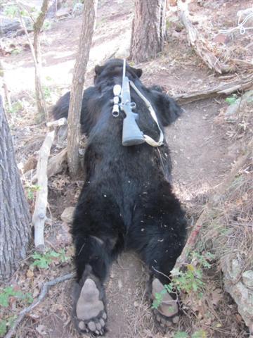Bear Killing 10-2011 049.jpg