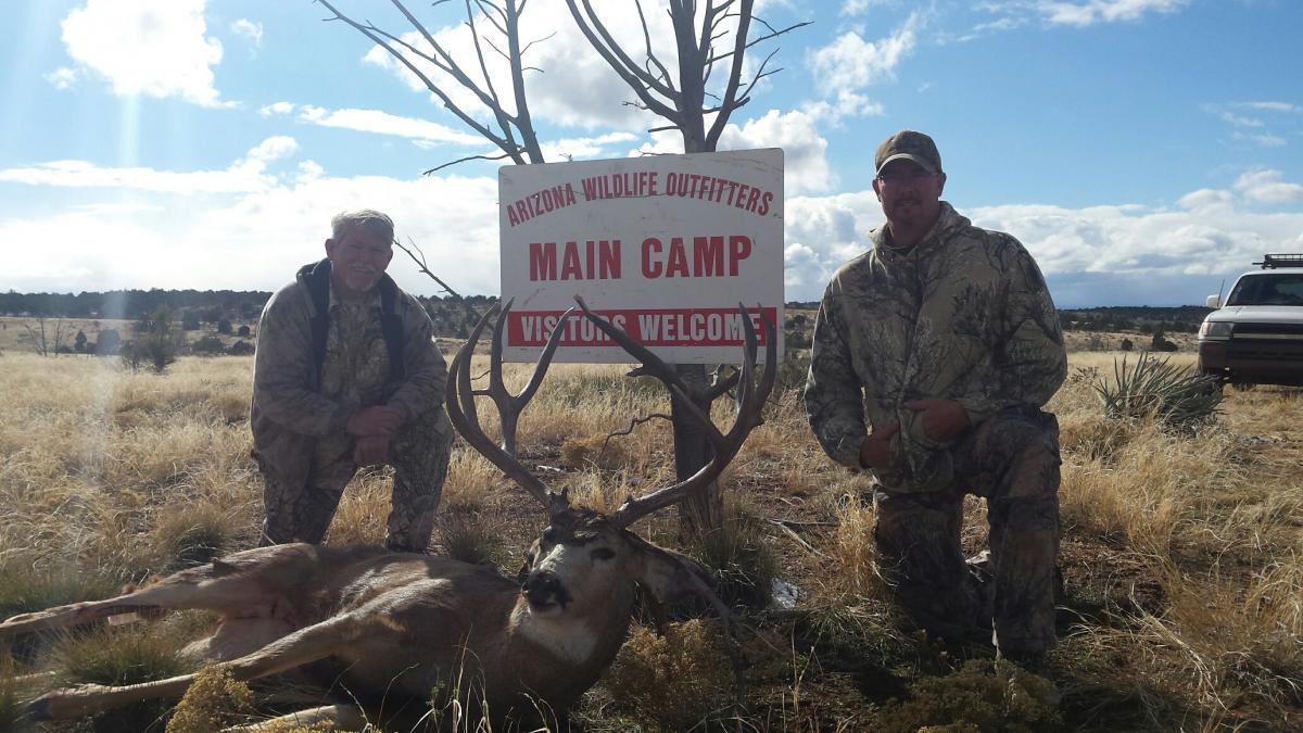 forums bear hunting forum looking hook camp post