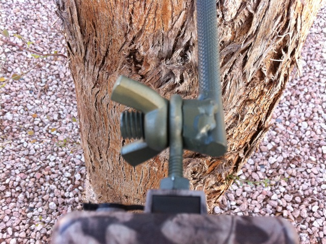Homemade Trail Camera Tree Mount Trail Cameras