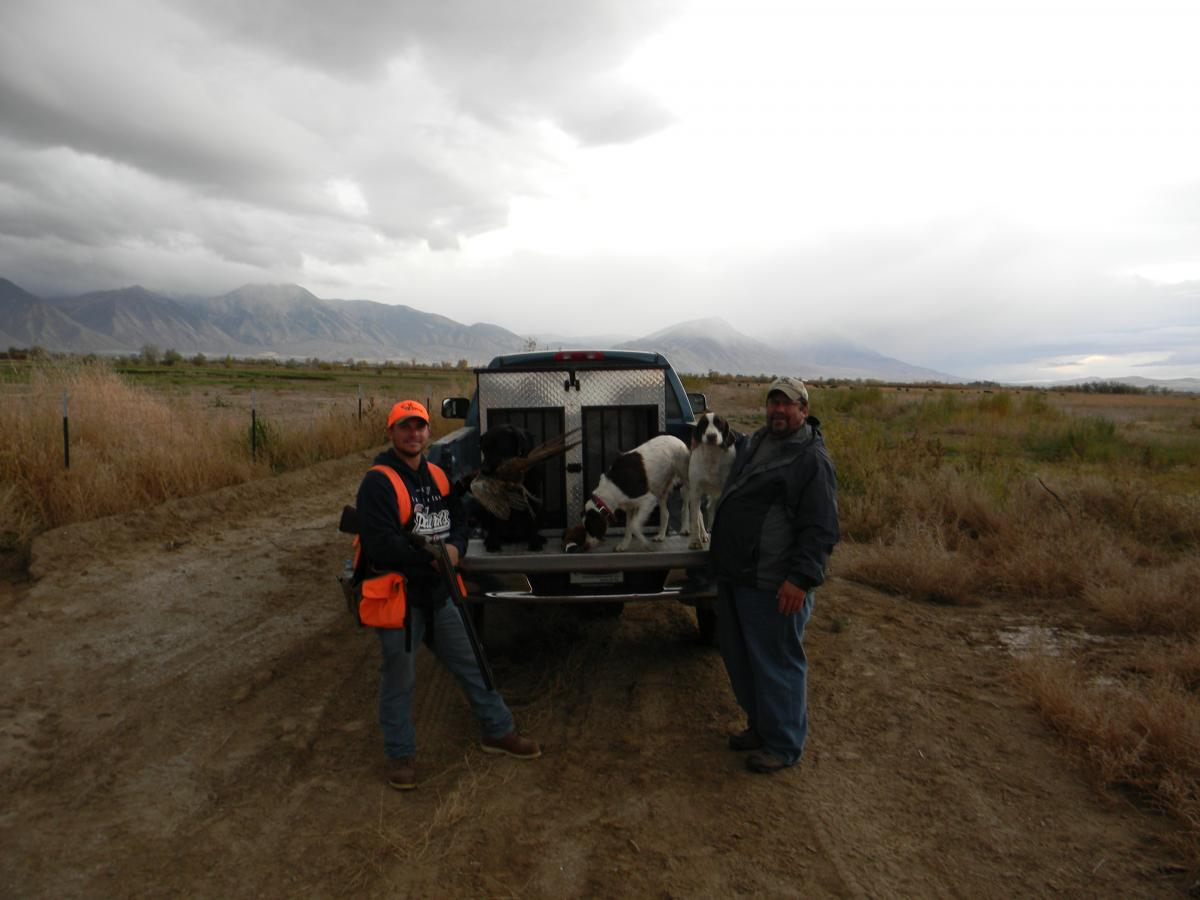 Pup's first pheasant hunt - Small Game, Upland Bird, and ...