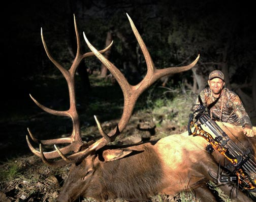 Bloody Bull - Elk Hunting - CouesWhitetail.com Discussion forum