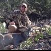 Muzzleloader Bighorn from 43B - last post by CraigK