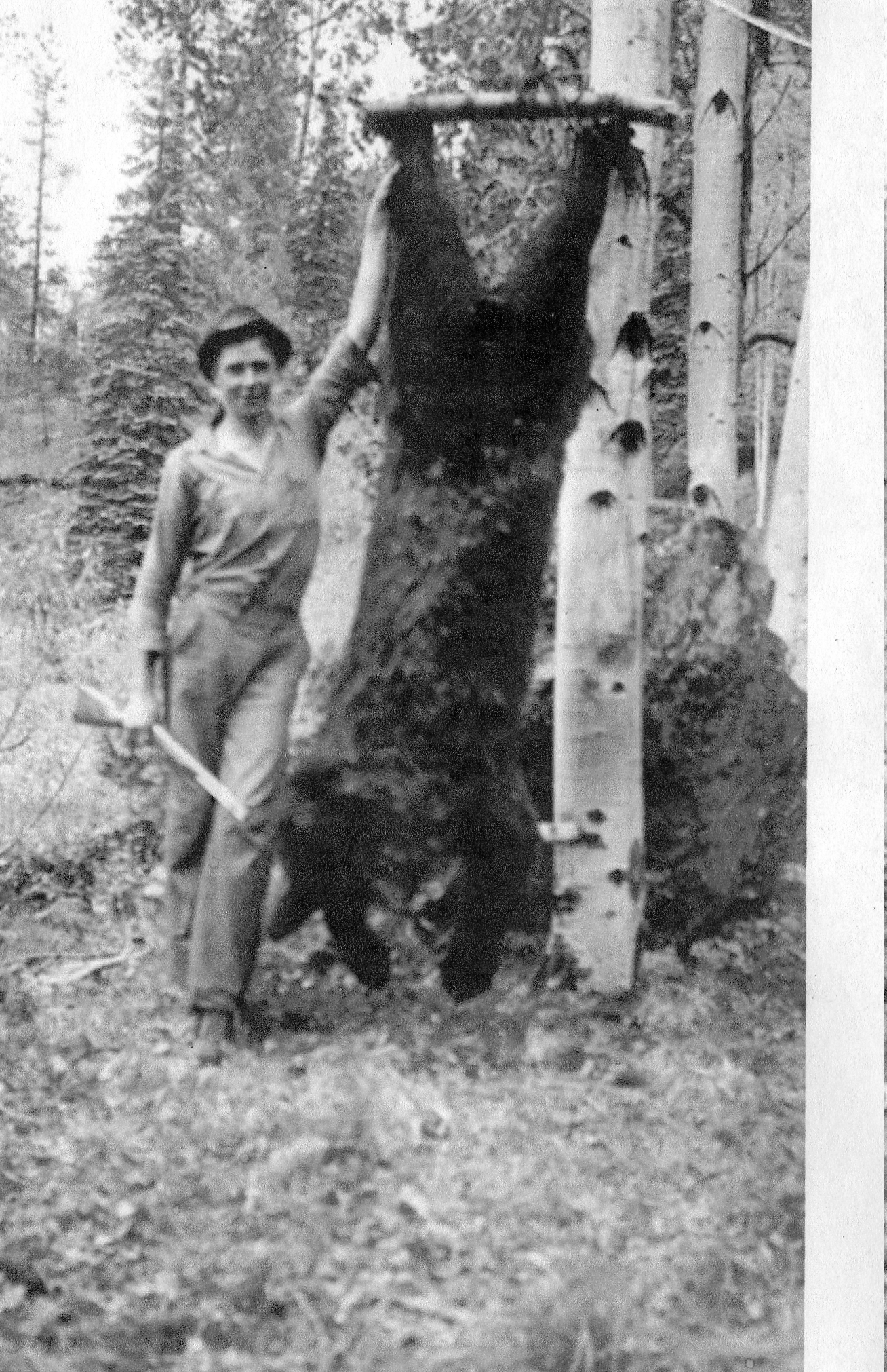 Grandfather S 1939 Bear Near Gooseberry Fort Apache