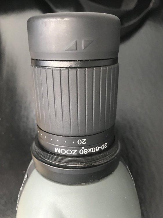 F7BFC214-56BA-473F-AFEC-DEEC74AF64E0.jpeg