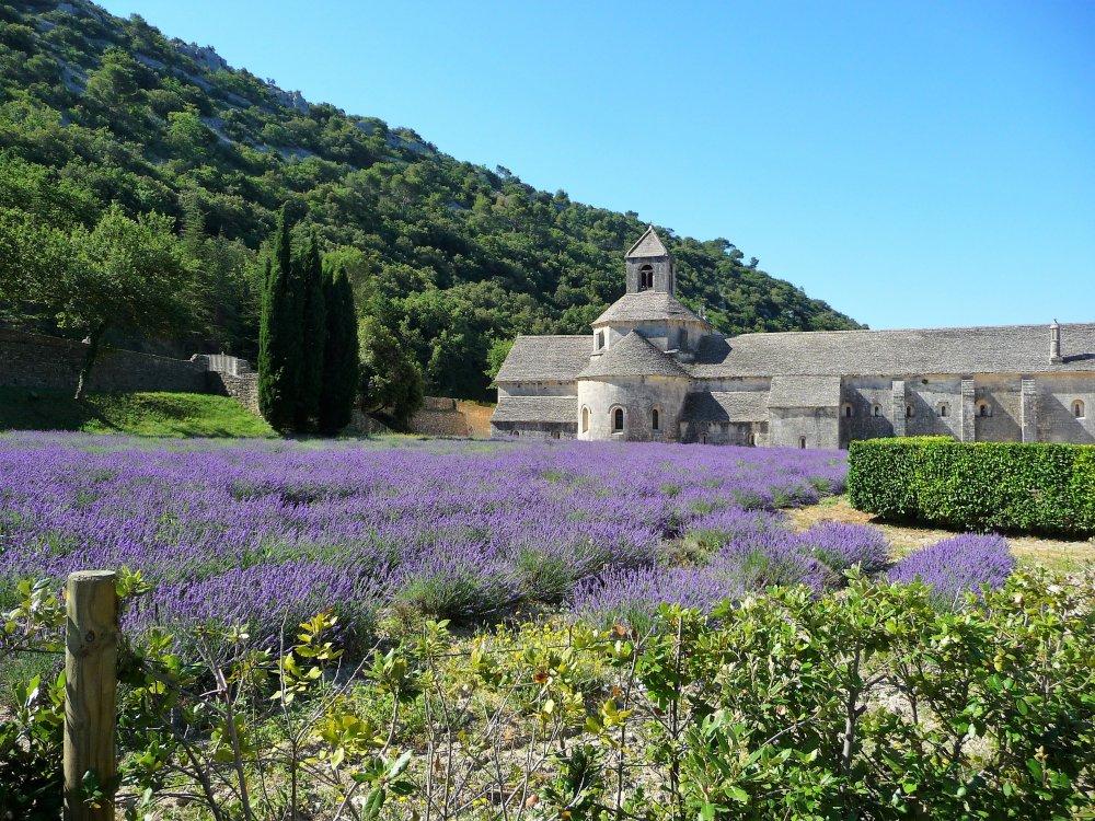 Abbey Notre-Dame de Senanque 1.JPG