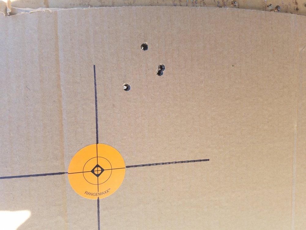 28 nosler target.jpg