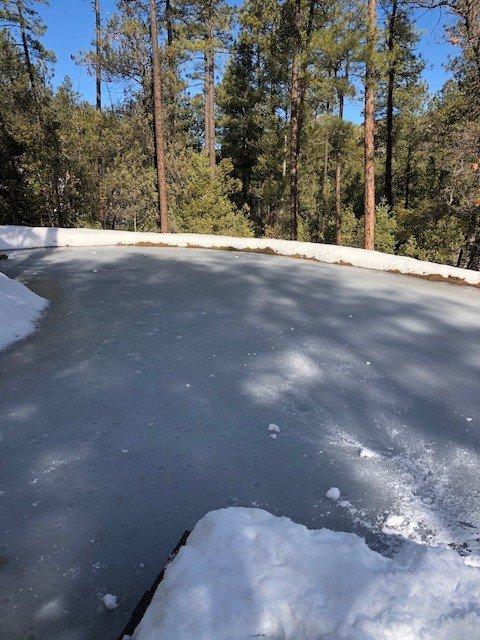 Frozen Pond.jpg