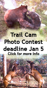 Trail Camera Photo Contest