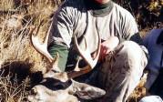 Dudley Britt 2001