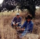Glen Stailey 1999
