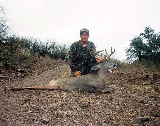 coues deer
