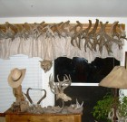 Reynolds Locked Coues Antler Sets