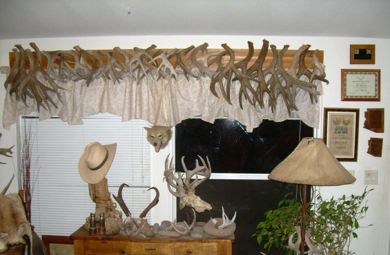 coues antler locked sets