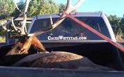 Hightracker with elk