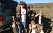 Jackrabbit hunting
