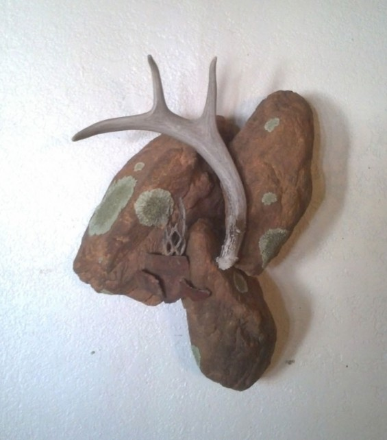 coues-wall-art
