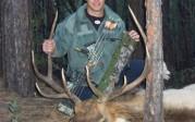 2012 Archery Bull Elk