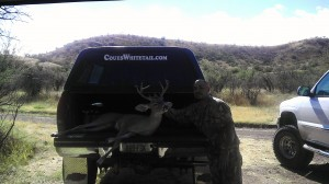 2012 Coues whitetail Buck