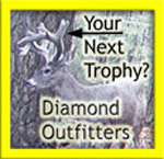 AZ Diamond Outfitters