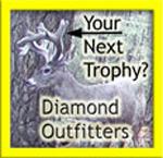 AZ Diamond Outfitters
