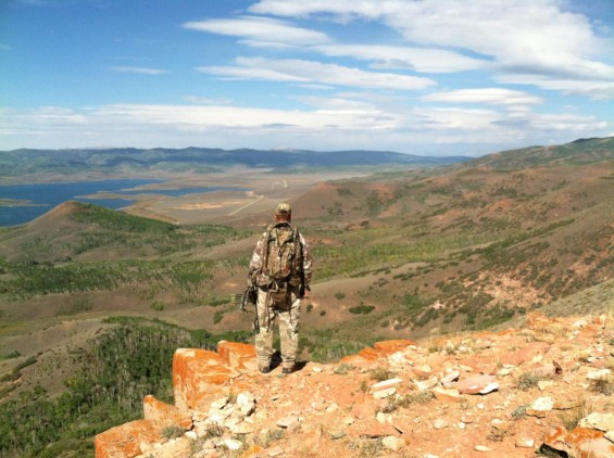 arizona bull elk hunt