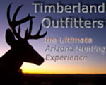 Timberland Outfitters