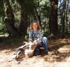 Sept 11 /2013 Velvet buck  25 yard shot