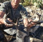 First coues