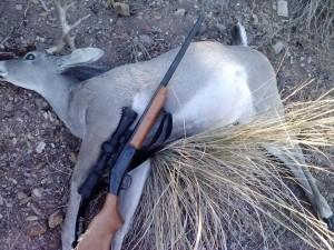 deer&rifle
