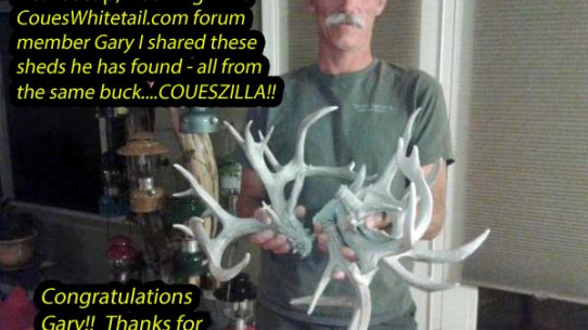 Gary found sheds from Coueszilla!!