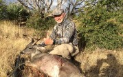 New Mexico Coues Buck