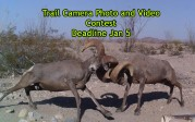 4th Annual Trail Camera Photo and Video Contest