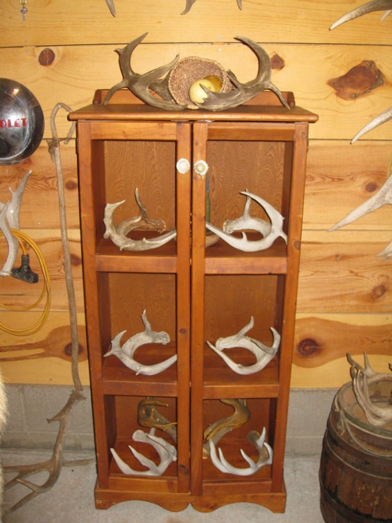 giant-coues-sets