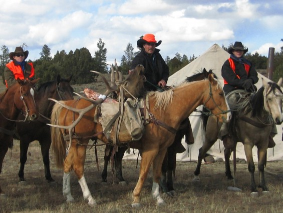 dieringer packing out elk on horses