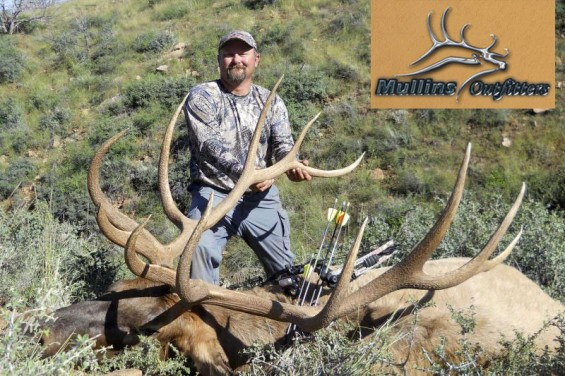 arizona archery bull elk
