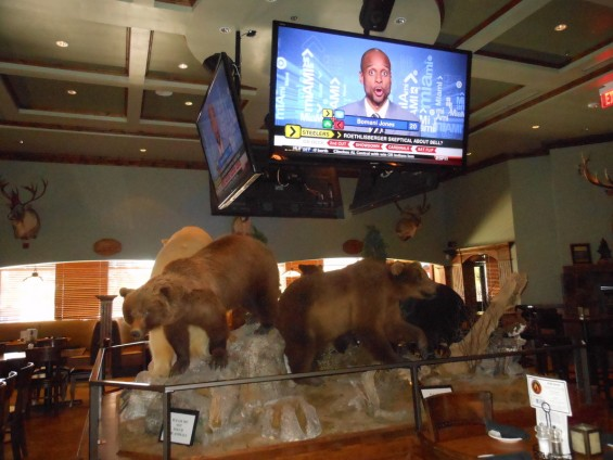 wild side grill bears and TV