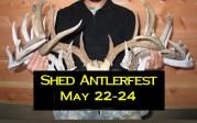 Shed Antlerfest 2015