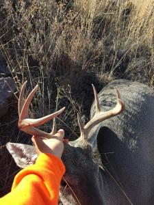 30a Buck