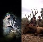 Archery unity 22 elk