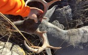 30a second chance solo hunt