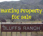 Larry McEnnis Aravaipa Property